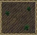 Green flecked crops